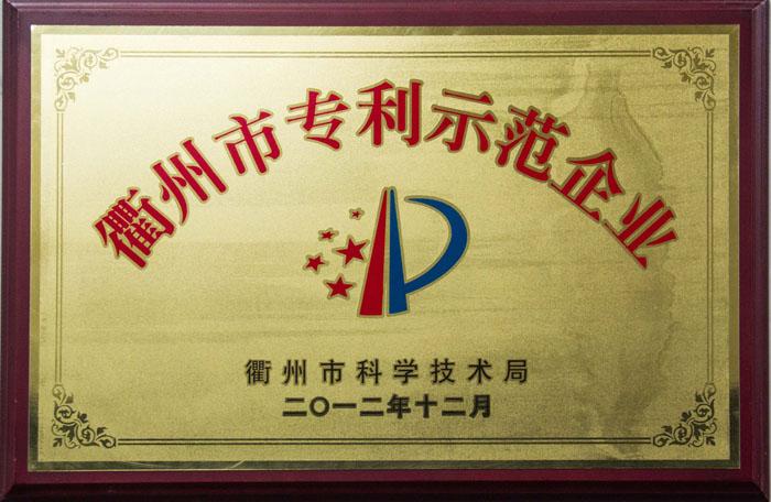 衢州市专利示范企业